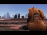Смотреть мультики - Дружок - смешной мультфильм