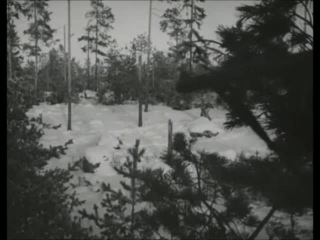 Виктор Лукин в роли финского солдата
